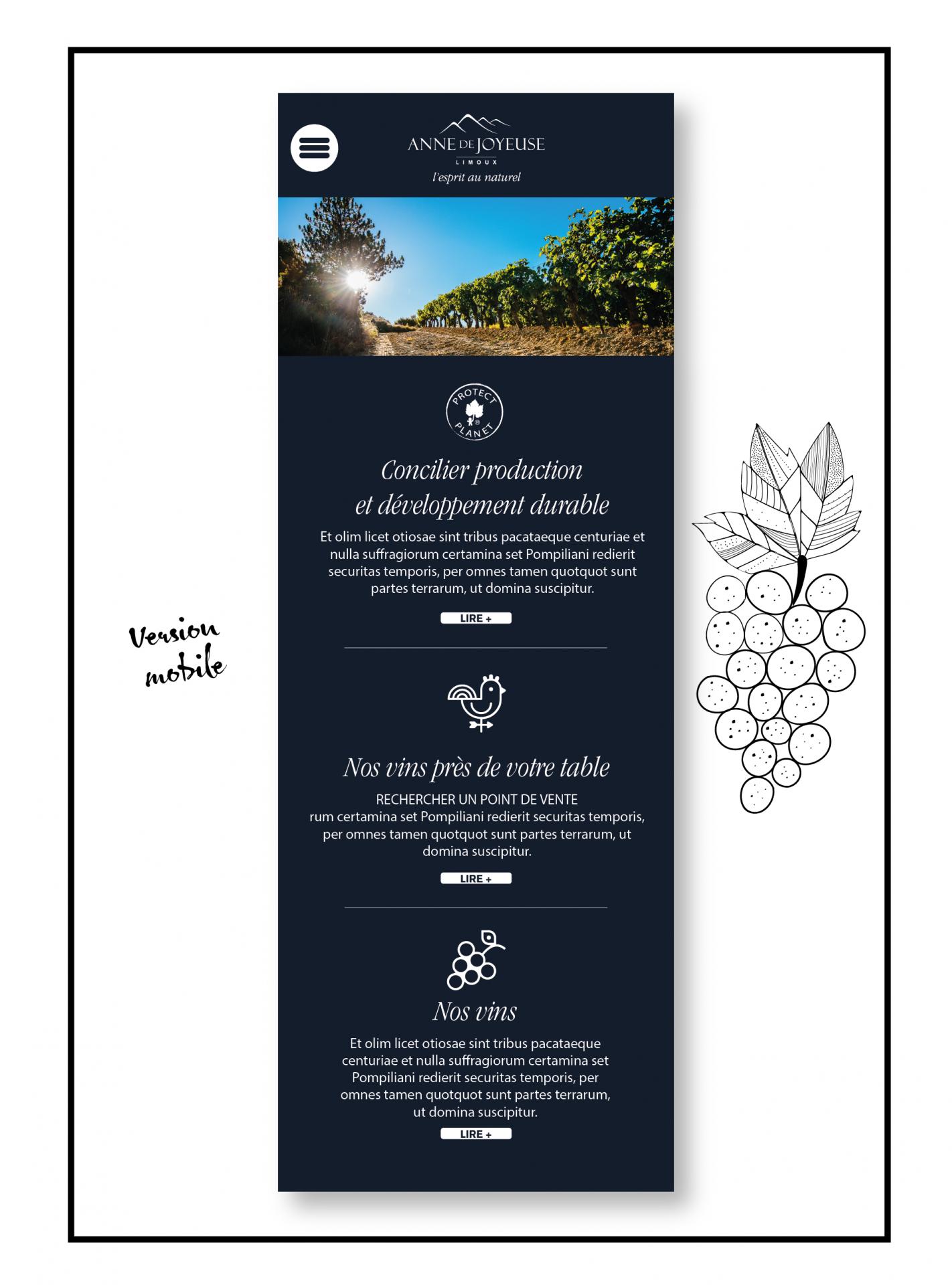 web design site internet Anne de Joyeuse